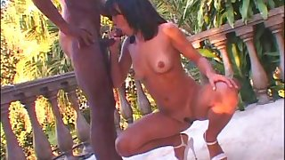 Outside sexual connection plus a blowjob is amazing with horny plus unrestrained  Talita