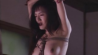 Likely thither Japanese babe gets fucked wide of her deviating lover. HD integument